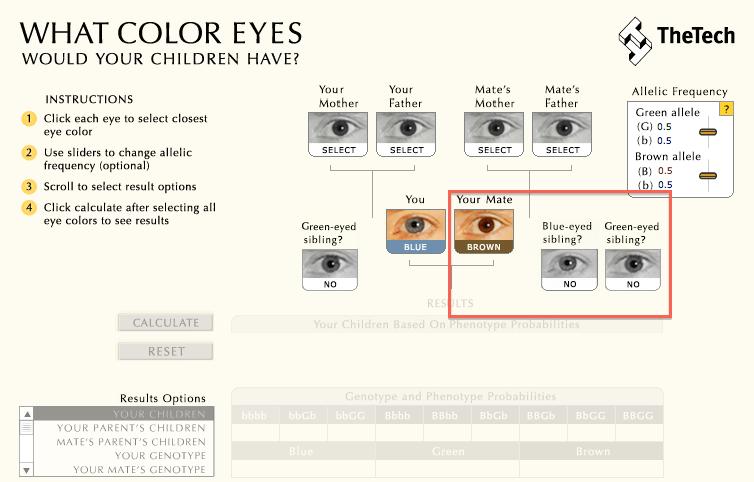 color-ojos-bebe-paso2
